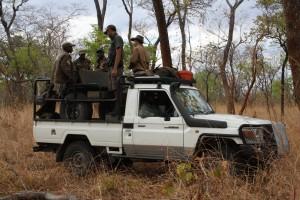 safarihunt-mozambiques-003